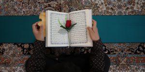 ۵۱۳ حافظ خواهر در رشتههای مختلف در مرکز قرآن و حدیث تربیت میشوند