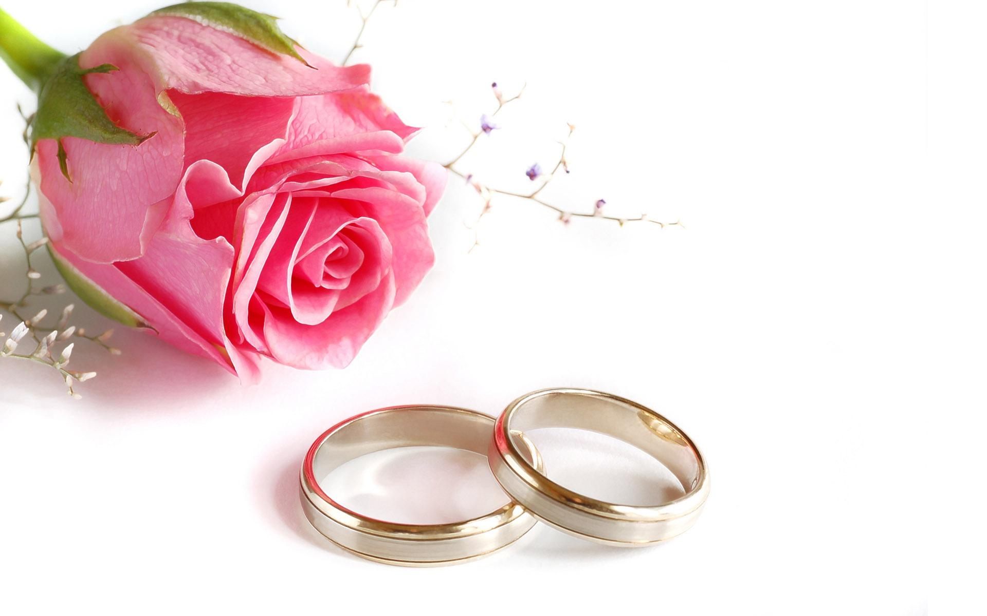 میزبانی حرم حضرت معصومه(س) از بیش از ۱۰۰ زوج برای مراسم عقد ازدواج در اعیاد شعبانیه