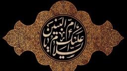زنان شیعه، تاریخسازانی بزرگ/بانویی که در مسیر زینب(س) قدم برداشت