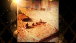 Yawm al-Hadm, the Day of Destruction